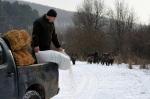 Gödöllő, 2012. február 13. Vaddisznók (Sus scrofa) követik az etetőautót egy szórón a Pilisi Parkerdő Zrt. gödöllői erdészetének területén, ahol a téli időszakban az átlagosnál több etetéssel segítik a vadállomány áttelelését. (MTI Fotó: Kovács Attila)